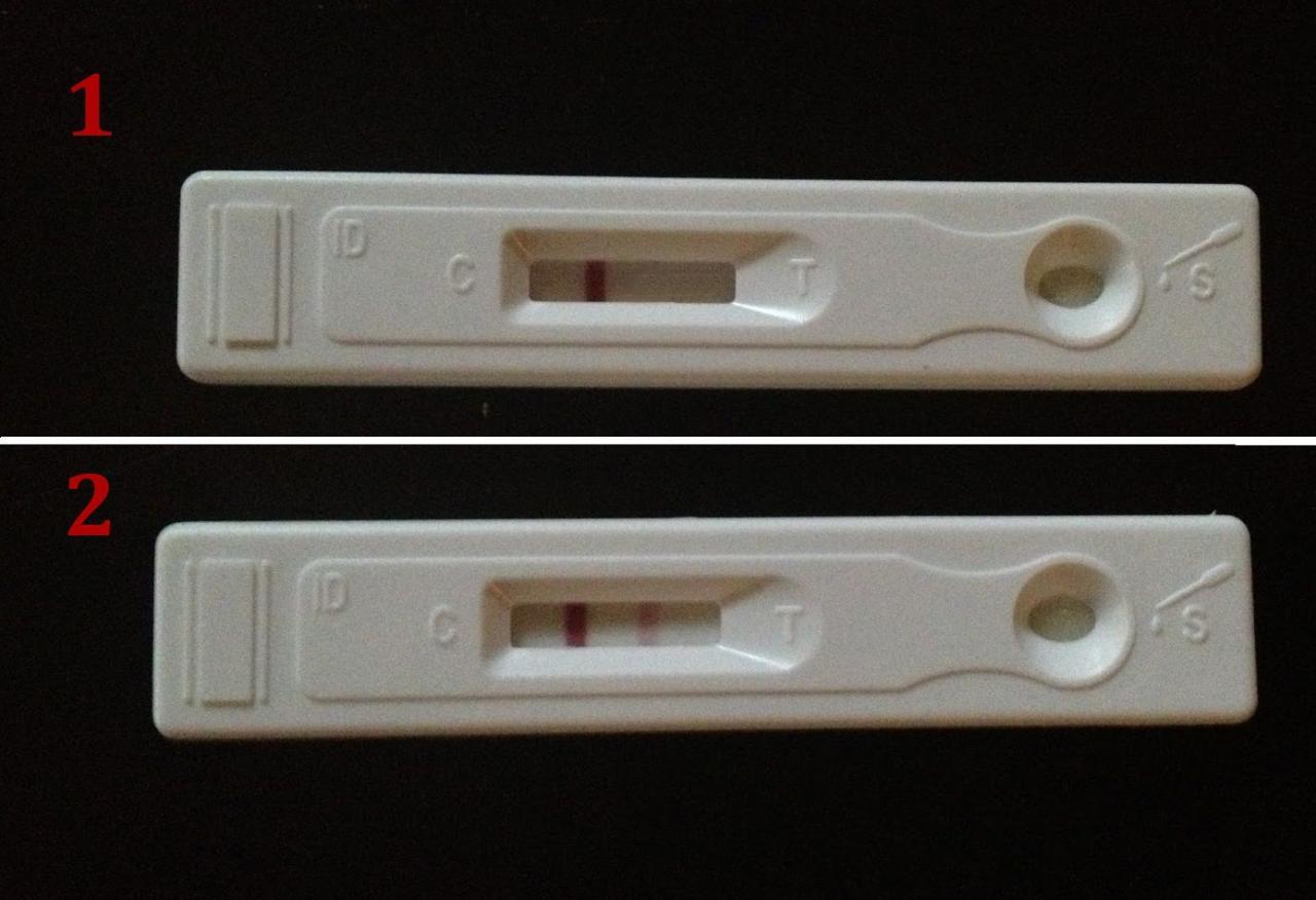 تحليل الحمل المنزلي حامل ام لا